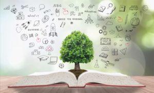 sasb-organizeaza-webinarul-accelerarea-schimbarii-prin-intermediul-prezentarii-informatiilor-sociale-a6739-300×182
